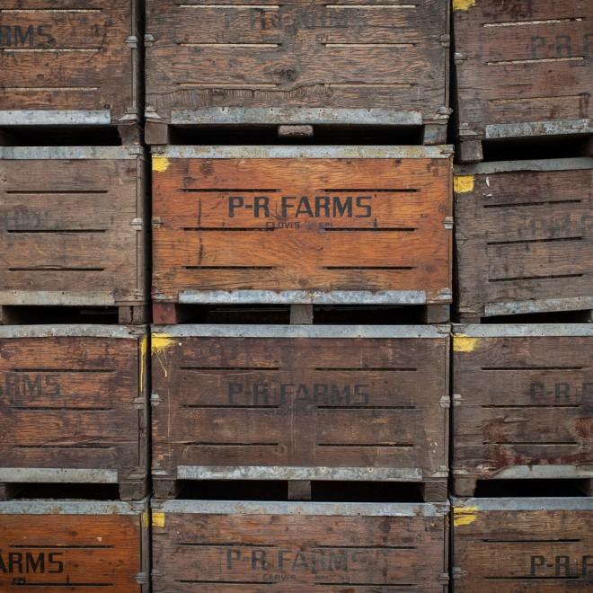 PR-Farms-8738